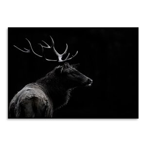 'The Deer Soul' Photographic Print by East Urban Home
