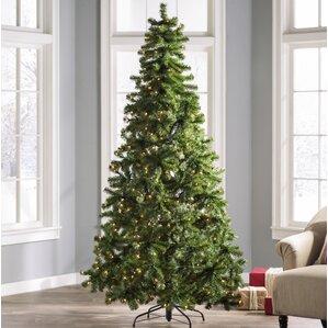 Christmas Trees You'll Love | Wayfair