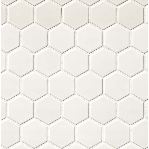Hexagon 2 x 2 Porcelain Mosaic Tile in Matte White by MSI