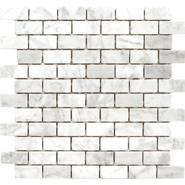 Carrara 1 x 2 Stone Mosaic Tile in White Tumbled by Parvatile