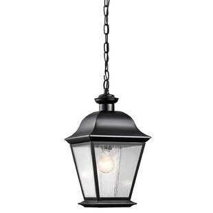 Darrah 1-Light Outdoor Hanging Lantern by Three Posts