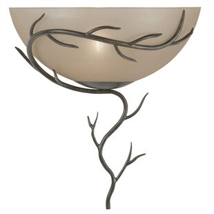 Find the perfect Easton 1-Light Wall Sconce By Loon Peak