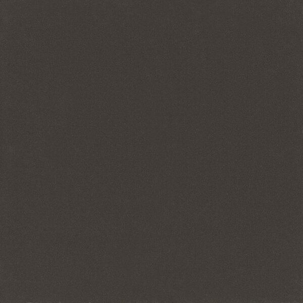 Element 24 x 24 Porcelain Tile in Off-Black Matte by Walkon Tile