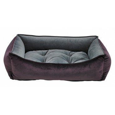 Scoop Dog Bed by Bowsers