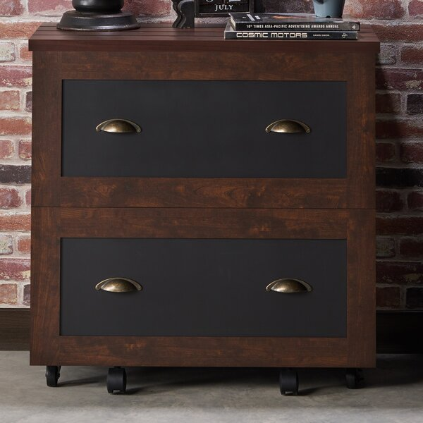 Zakhar Industrial 2-Drawer Vertical Filing Cabinet by 17 Stories