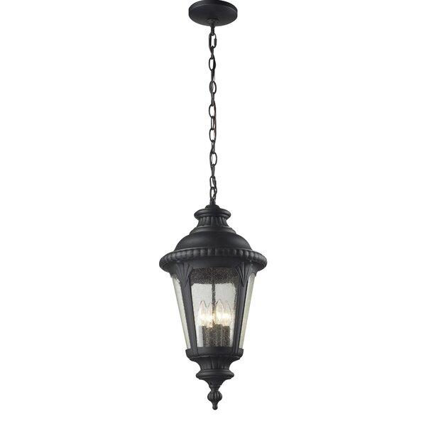 Lumley 4-Light Outdoor Hanging Lantern by Astoria Grand