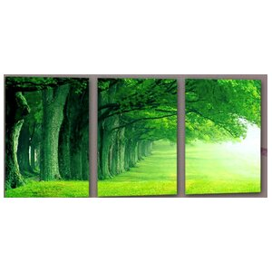 'Forest Trees' Photographic Print Multi-Piece Image on Wrapped Canvas by Latitude Run