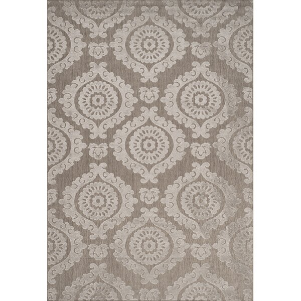 Hughes Suzani Taupe Indoor / Outdoor Area Rug by Alcott Hill