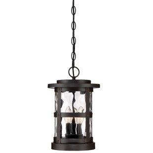 Best Price Terraze 2-Light Outdoor Hanging Lantern By Designers Fountain