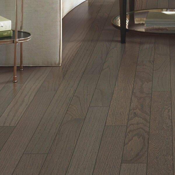 Walbrooke 3-1/4 Solid Oak Hardwood Flooring in Shale by Mohawk Flooring