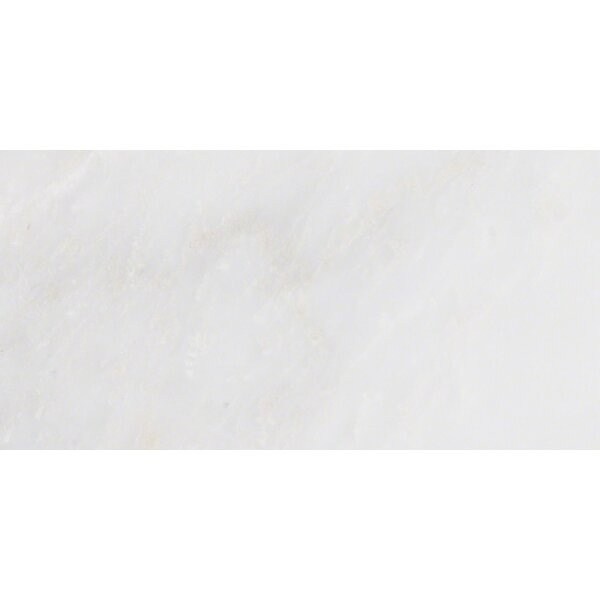 Arabescato Carrara 6 x 12 Marble Field Tile in White by MSI