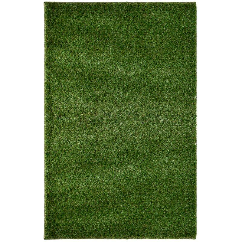 Imagine Rugs Green Indoor/Outdoor Area Rug & Reviews | Wayfair