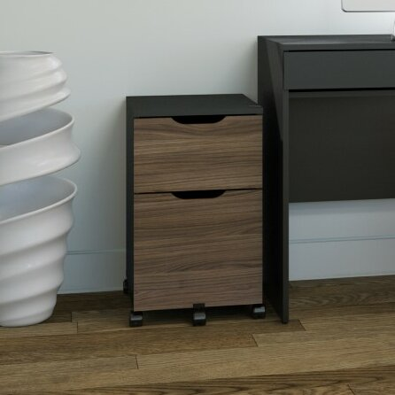 Darla 2 Drawer Mobile Vertical File by Latitude Run
