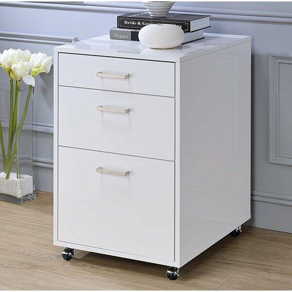 Eichhorn 3-Drawer Mobile Vertical Filing Cabinet by Rebrilliant