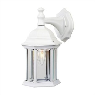 Find the perfect Frederica 1-Light Outdoor Wall Lantern By Breakwater Bay