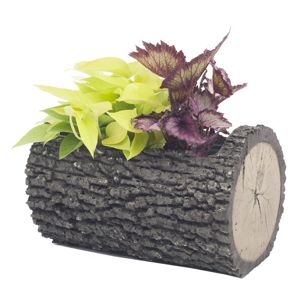 Opal Horizontal Surreal Polyurethane Foam Pot Planter by Millwood Pines