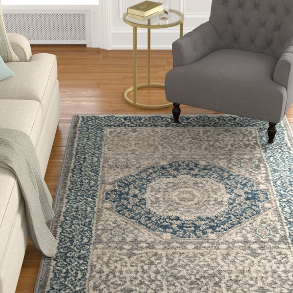Sofia Light Gray/Blue Area Rug by Darby Home Co
