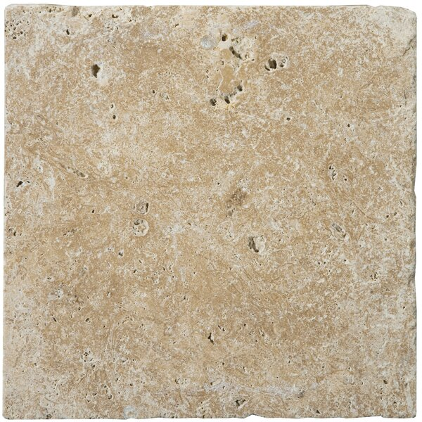 Travertine 6 x 6 Unfilled and Tumbled Tile in Walnut by Emser Tile