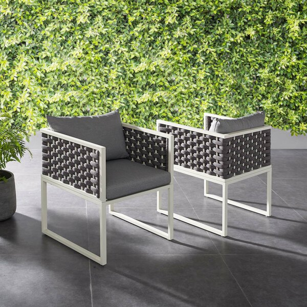 Rossville Dining Chair with Cushion (Set of 2) by Ivy Bronx Ivy Bronx