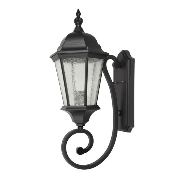 Dunanney 1-Light Outdoor Wall Lantern by Canora Grey