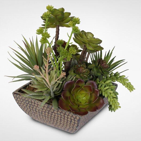 Artificial Attractive Desktop Succulent Centerpiece Plant in Pot by Bungalow Rose