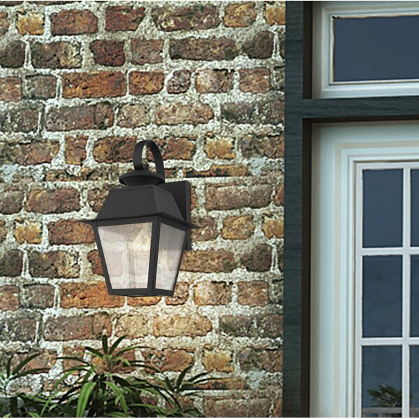 Cynda 1-Light Outdoor Wall Lantern by Darby Home Co