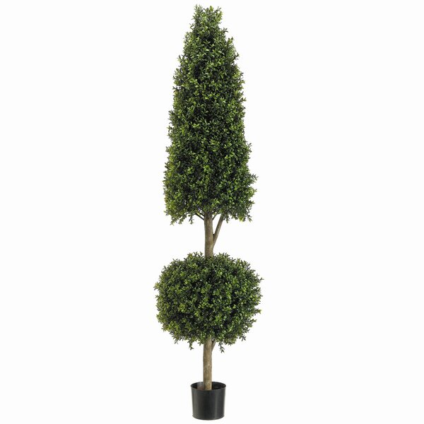 Cone Ball Boxwood Topiary in Pot by Tori Home