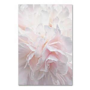 Pink Peony Petals IV by Cora Niele Photographic Print on Wrapped Canvas by Trademark Fine Art