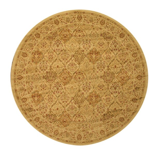 Pomfret Gold Area Rug by Threadbind