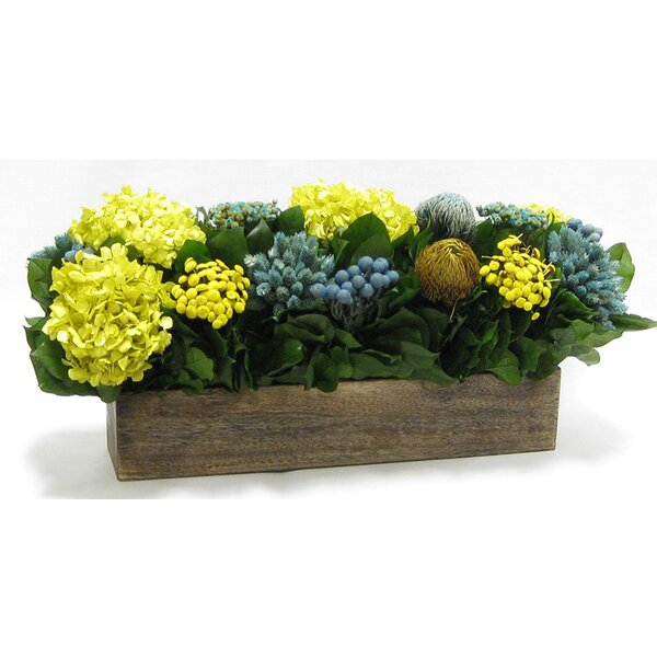 Mixed Floral Arrangement in Wooden Long Container by August Grove