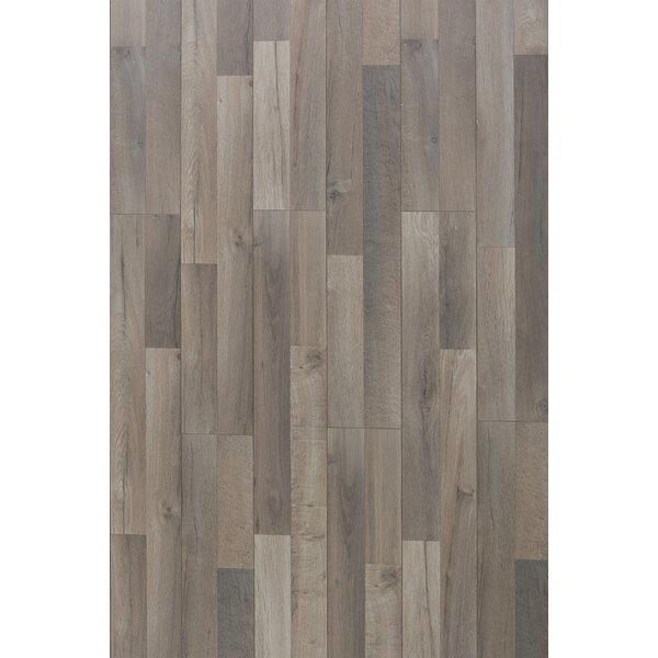 Elegant 12 x 48 x 12.3mm Oak Laminate Flooring in Great Wall by Christina & Son