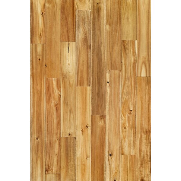 Annette 3-3/4 Solid Acacia Hardwood Flooring in Chai Beige by Welles Hardwood