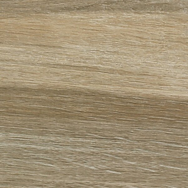 Stone 6 x 36 Porcelain Field Tile in Beige by Madrid Ceramics