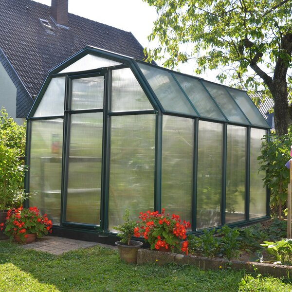 EcoGrow 2 Twin Wall 6 Ft. W x 8 Ft. D Greenhouse by Rion Greenhouses