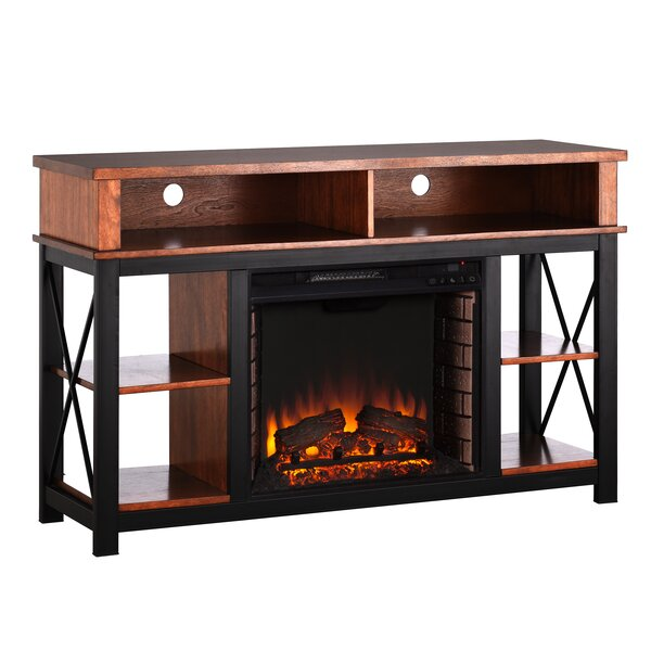 Parkville 52 TV Stand with Fireplace by Loon Peak