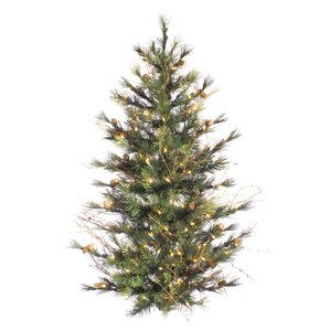 mixed country 3 freshly cut christmas tree - Real Christmas Trees