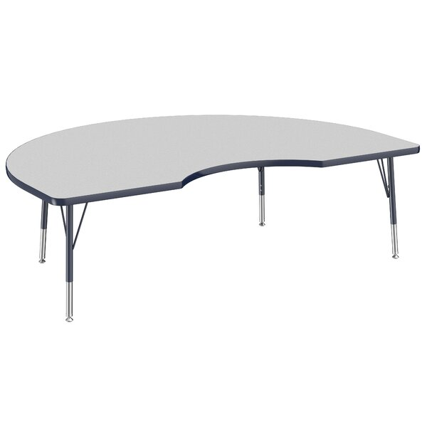 72 x 48 Kidney Activity Table by ECR4kids