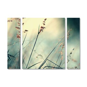 'About Hope' by Beata Czyzowska Young 3 Piece Photographic Print on Wrapped Canvas Set by Trademark Fine Art