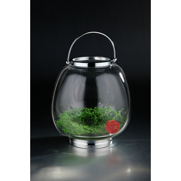 Glass Terrarium Hanging Planter by Diamond Star Glass