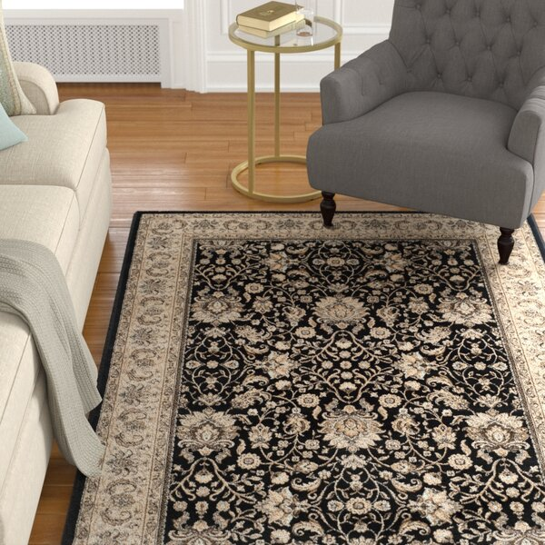 Petronella Black/Ivory Area Rug by Charlton Home