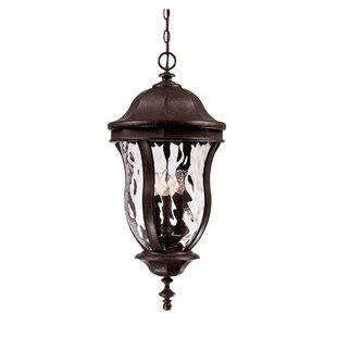 Coutu 4-Light Outdoor Hanging Lantern By Darby Home Co Outdoor Lighting