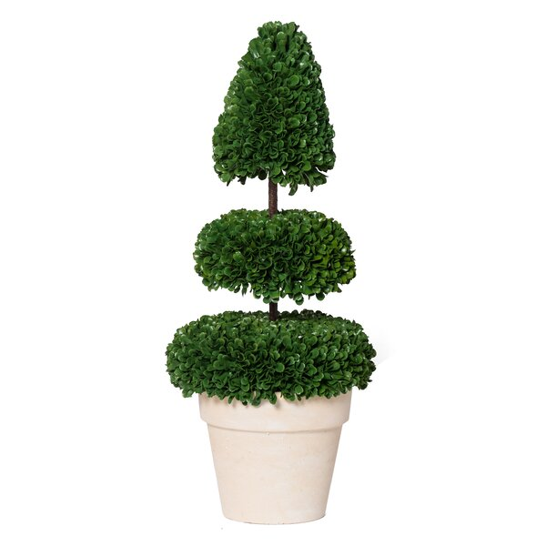 Potted Faux Spired Floor Boxwood Topiary by Ivy Bronx