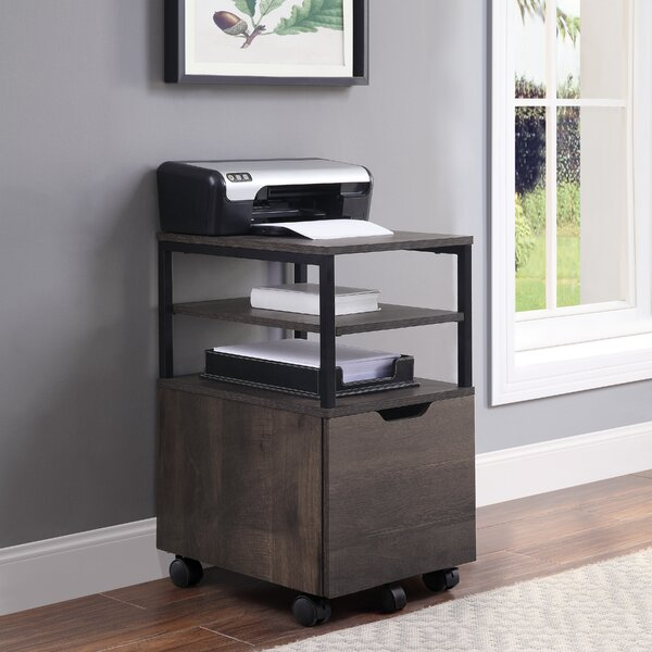 Stormstown 1-Drawer Mobile Vertical Filing Cabinet