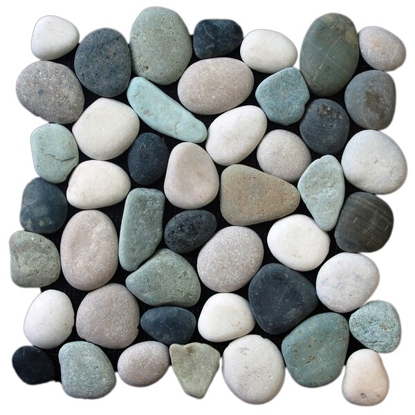 Classic Pebble Random Sized Natural Stone Pebble Tile in Multi by Pebble Tile