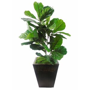 faux fiddle leaf floor plant in planter