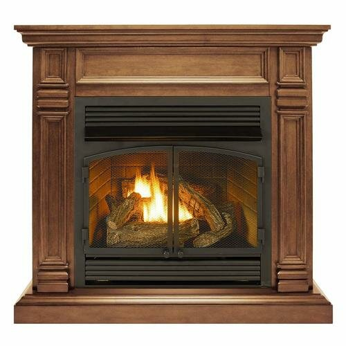 Jone Propane/Natural Gas Fireplace by Darby Home Co