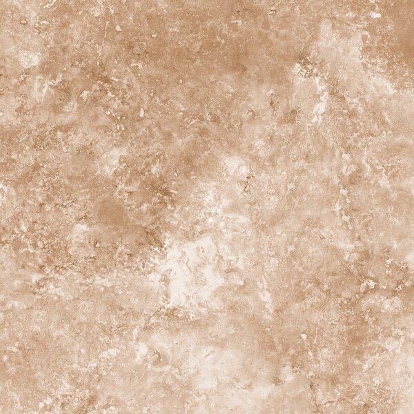 Glazed 12 x 24 Porcelain Field Tile in Brown by Multile