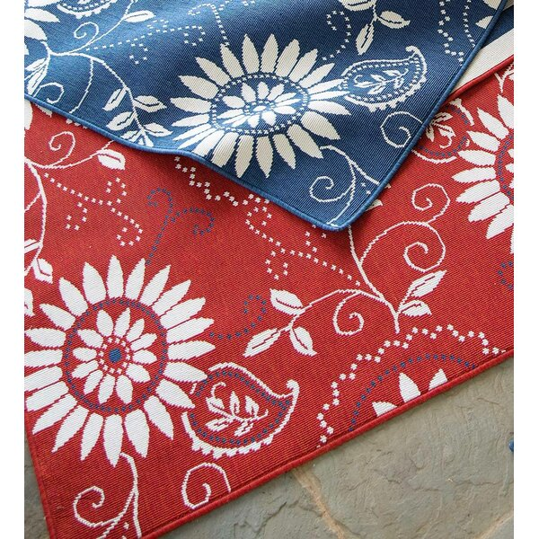 Lexington Bandana Red/White Indoor/Outdoor Area Rug by Plow & Hearth