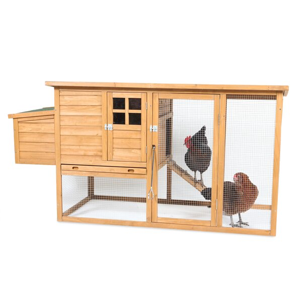 Flat Top Complete Chicken Coop with 2 Roosting Bar by Petmate