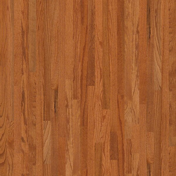 Sawgrass 2-1/4 Solid Red Oak Hardwood Flooring in Gainesville by Shaw Floors